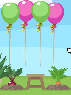 petsocietyballoons