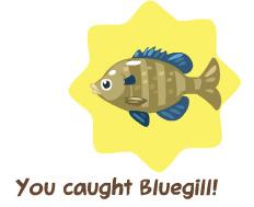 petsocietyfishingbluegill