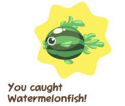 petsocietyfishingwatermelonfish