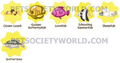 petsociety-fishset3.1