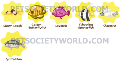 petsociety-fishset3.1